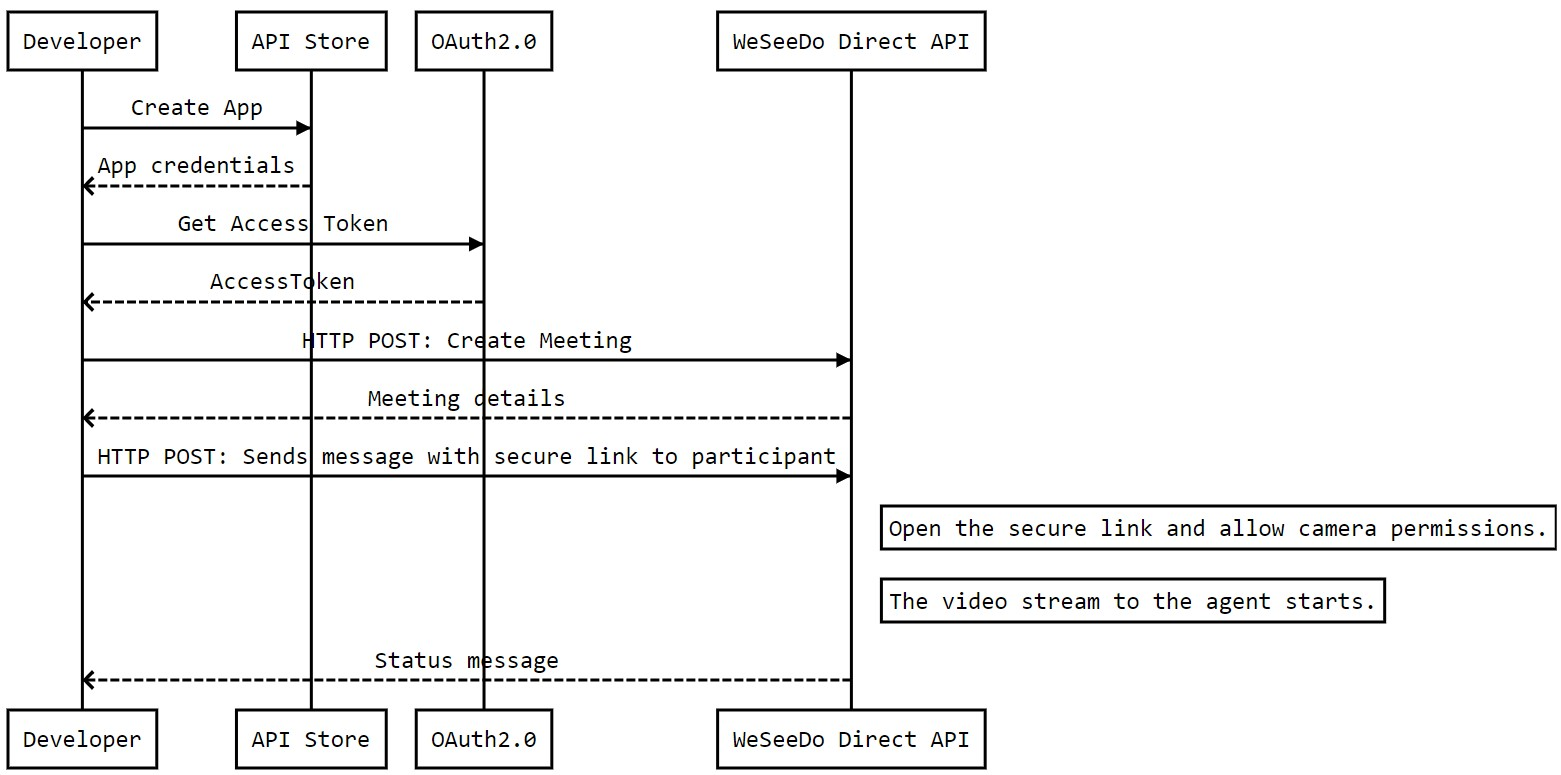 WeSeeDo Direct API Workflow